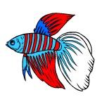 Раскраска Аквариумные рыбки